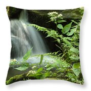 Flowers And Falls Throw Pillow