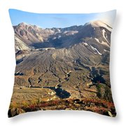 Flowers On Mount St. Helens Throw Pillow