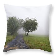 Foggy Landscape Throw Pillow