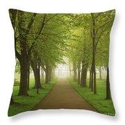 Foggy Park Throw Pillow