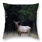 Forest Elk Throw Pillow