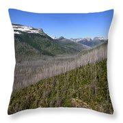 Forest Fire Sticks-1 Throw Pillow