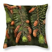 Forest Treasures Throw Pillow by Bonnie Bruno