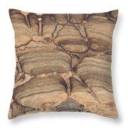 Fossil Stromatolite Throw Pillow