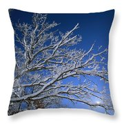Fresh Snowfall Blankets Tree Branches Throw Pillow