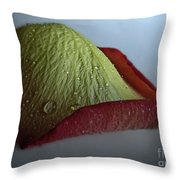 Freshly Fallen Throw Pillow