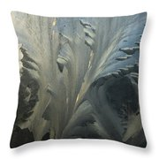 Frost Crystal Patterns On Glass, Ross Throw Pillow