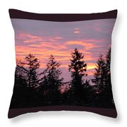 Frosted Morning Silhouette Throw Pillow