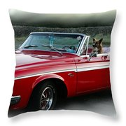 Furry Fury Throw Pillow