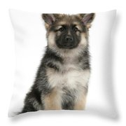 German Shepherd Puppy Throw Pillow