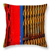 Gilded Cage Throw Pillow by Skip Hunt