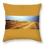 Golden Harvest Field 1 Throw Pillow