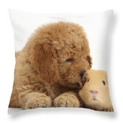 Goldendoodle Puppy And Guinea Pig Throw Pillow