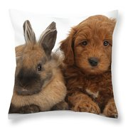 Goldendoodle Puppy And Rabbit Throw Pillow