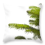 Green Branches Of A Christmas Tree Throw Pillow