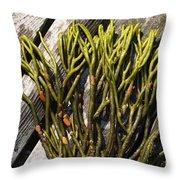 Green Fleece Seaweed Throw Pillow