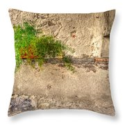Green Plant Throw Pillow