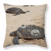 Green Sea Turtles With Gps Throw Pillow
