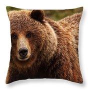 Grizzly Bear, Yukon Throw Pillow