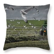 Gull Chased Tractor Throw Pillow