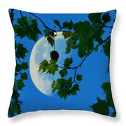 Half Moon Throw Pillow