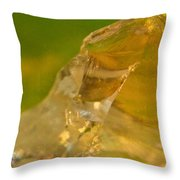 Halicid Bee 6 Throw Pillow