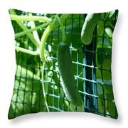 Hanging Cucumbers Throw Pillow