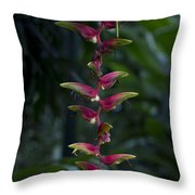 Hanging Gardens Throw Pillow