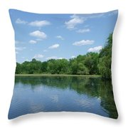 Harris Pond Throw Pillow