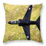 Hawk In Mach Loop Throw Pillow