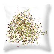 Heat Shock Protein 90 Throw Pillow