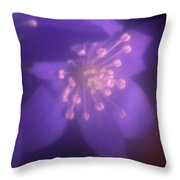 Hepatica Throw Pillow