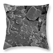 Heroin, Sem Throw Pillow by Ted Kinsman