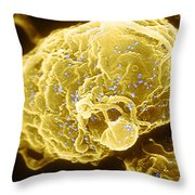 Hiv-1 Infected T4 Lymphocyte Sem Throw Pillow