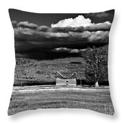Homestead Throw Pillow