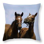 Horse Foul Play Iv Throw Pillow