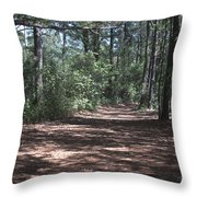 Horse Path Throw Pillow