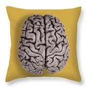 Human Brain Throw Pillow
