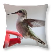 Hummingbird With Wings Back Throw Pillow