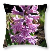 Hyacinth Named Splendid Cornelia Throw Pillow