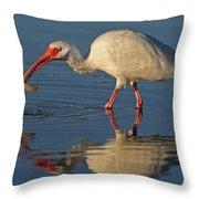 Ibis With Shrimp Throw Pillow