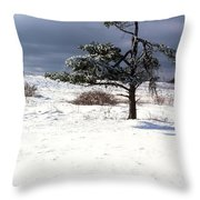 Iced Tree Shenandoah National Park Throw Pillow