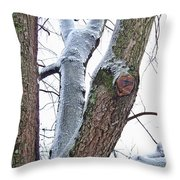 Icy View Throw Pillow