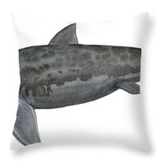 Illustration Of A Prehistoric Throw Pillow by Sergey Krasovskiy