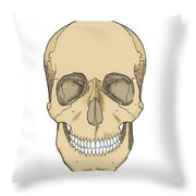 Illustration Of Anterior Skull Throw Pillow