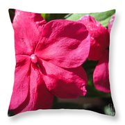 Impatiens Named Dazzler Burgundy Throw Pillow