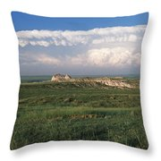Independence Day Throw Pillow by Jim Benest