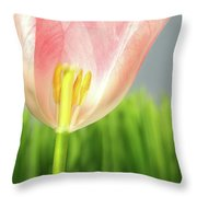 Inside Of A Pink Tulip Throw Pillow by Sandra Cunningham