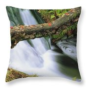 Ireland Waterfall Throw Pillow