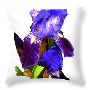 Iris On White Throw Pillow